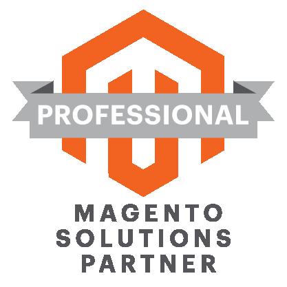 Magento Professional
